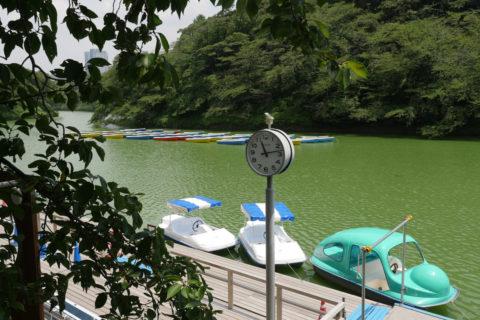 Chidori-ga-fuchi Boat Pier