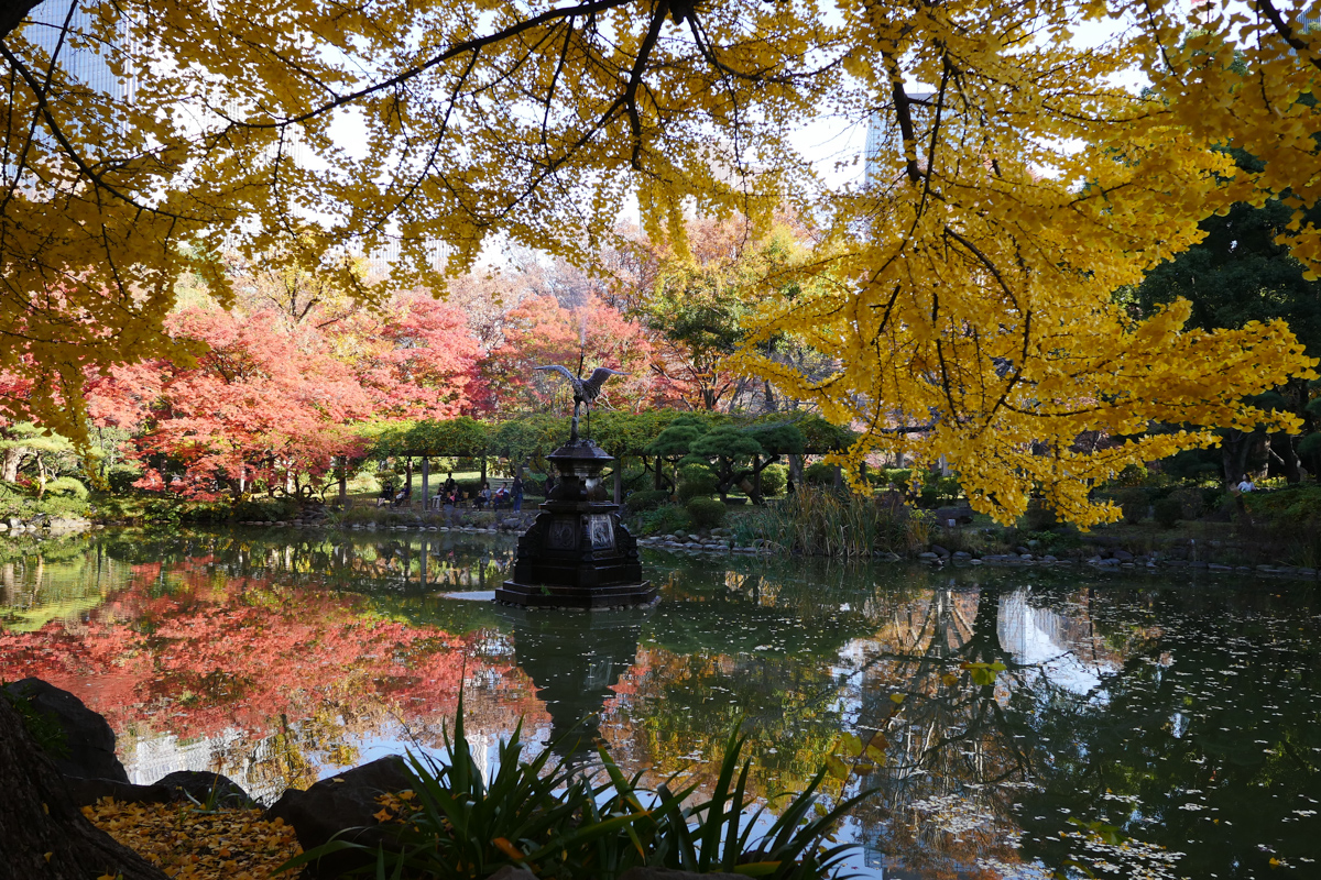 Yellow Ginkgo Trees at Hibiya Park